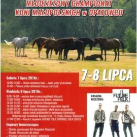 XIX Świętokrzyski Młodzieżowy Championat Koni Małopolskich w Opatowcu